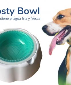 frosty-bowl
